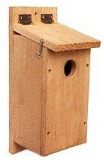 See the Northern Flicker Birdhouse Page