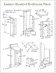 Print eastern bluebird birdhouse plans or just view paperless.